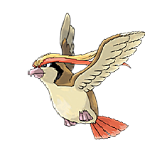 Pidgeot for Pokemon Go Map, Evolution, Simulators